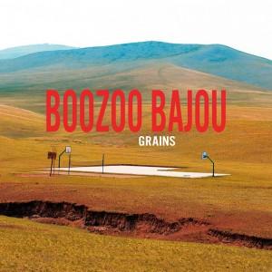 boozoo_grains